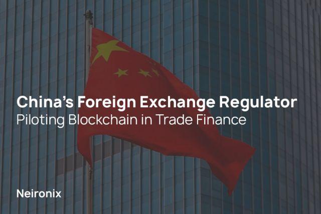 Foreign Exchange Regulator Piloting