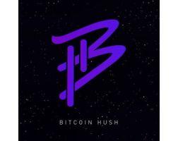 bitcoin hush coin market